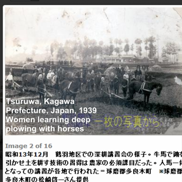 Tsuruwa women ddeepplowing